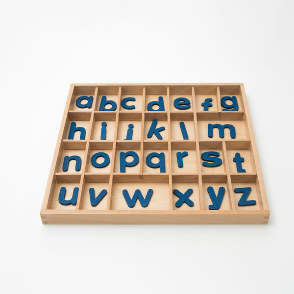 Montessori Movable Alphabets Box Letters Wood for Early Childhood Education Preschool