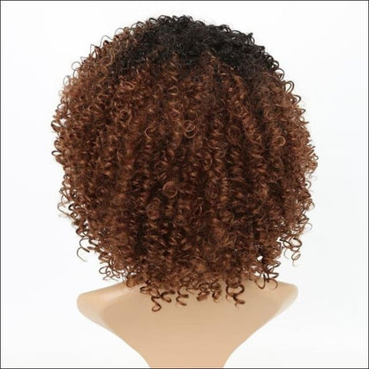 Luxury For Braiding Heat Resistant Fiber 14 Ombre Brown Color Afro Kinky Curly High Temperature Synthetic Wigs
