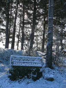 Early winter in Treflach