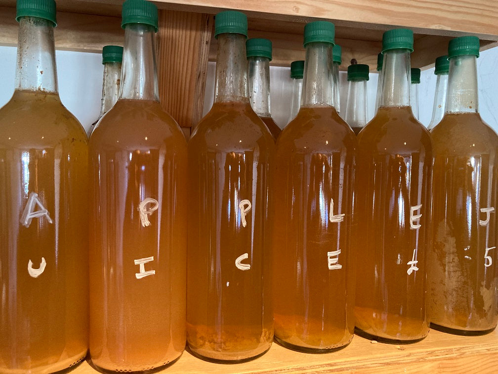 Treflach Farm Apple Juice