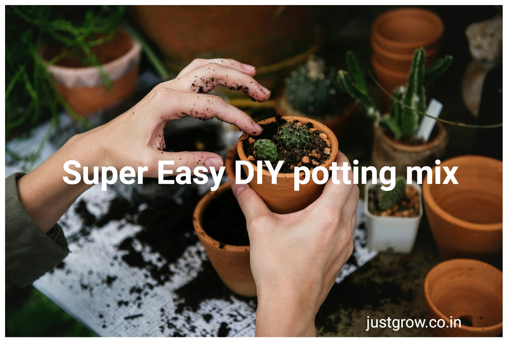 DIY Potting Mix Recipe the Just Grow way!