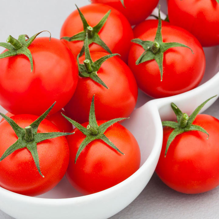 How to grow tomato plant from seeds?