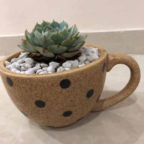Coffee Mug Ceramic Planter | justgrow