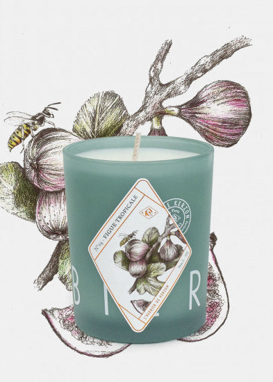 KERZON - Fragranced candle - Figue tropicale