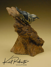"""Black and White Warbler"""