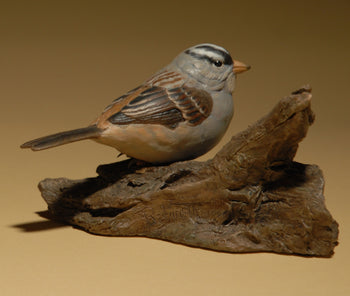 """White Crowned Sparrow"""