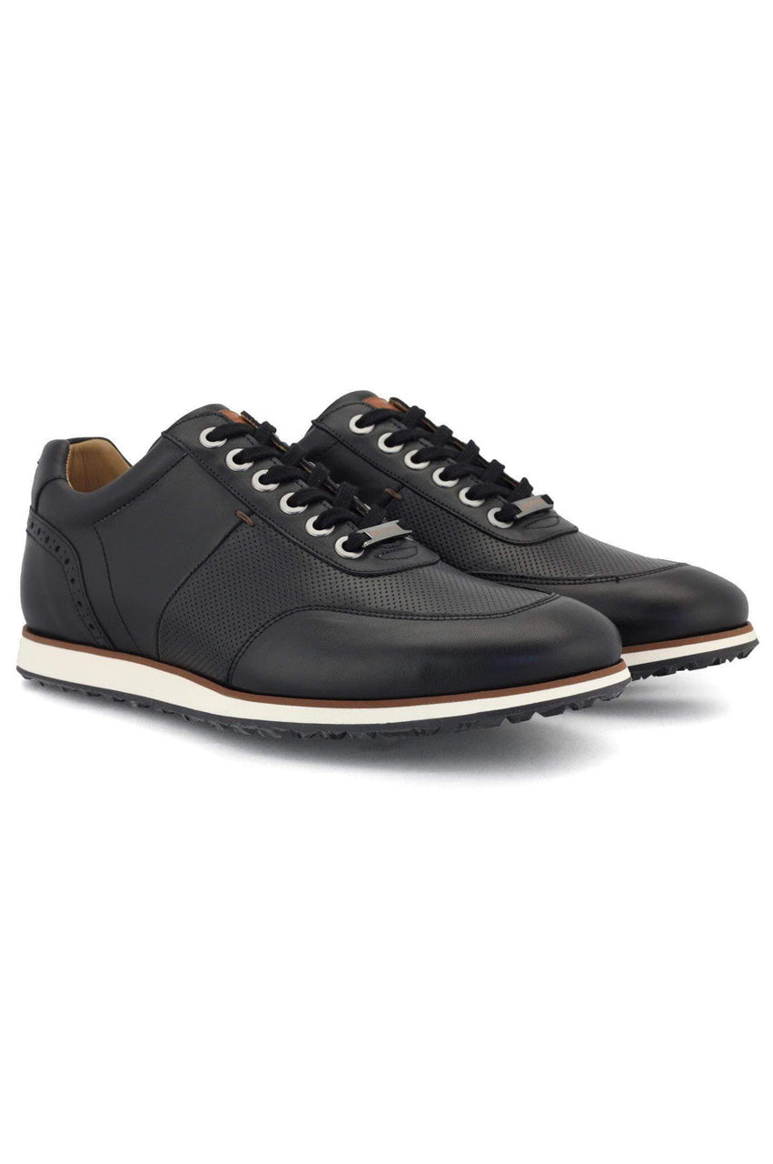 Men's Royal Albartross Golf Shoes | The Driver Black