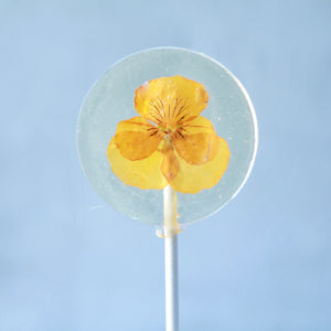 Viola Pansy Flower Lollipops| 8 PCS| 2 Sizes