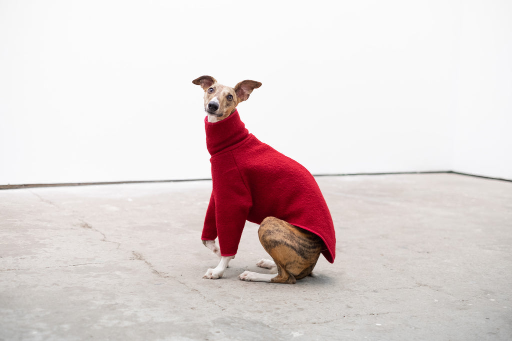 Whippet Coat in Raspberry