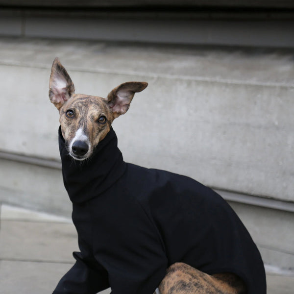 Whippet Raincoat in Black