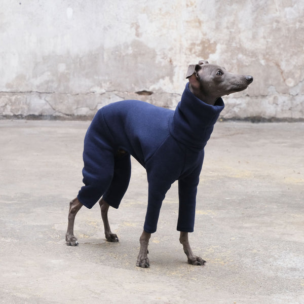 Italian Greyhound Onesie