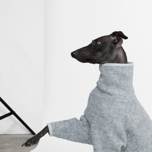 Whippet Coat in Grey