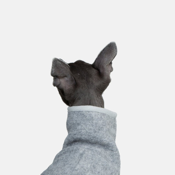 Occam London makes handmade Sighthound wear - This Coat is for Whippets and Italian Greyhounds.