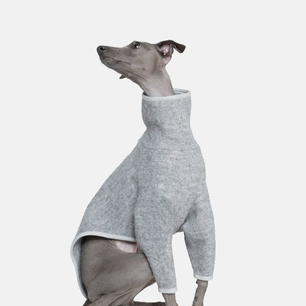 Occam makes handmade Sighthound wear - This Coat is for Whippets and Italian Greyhounds.