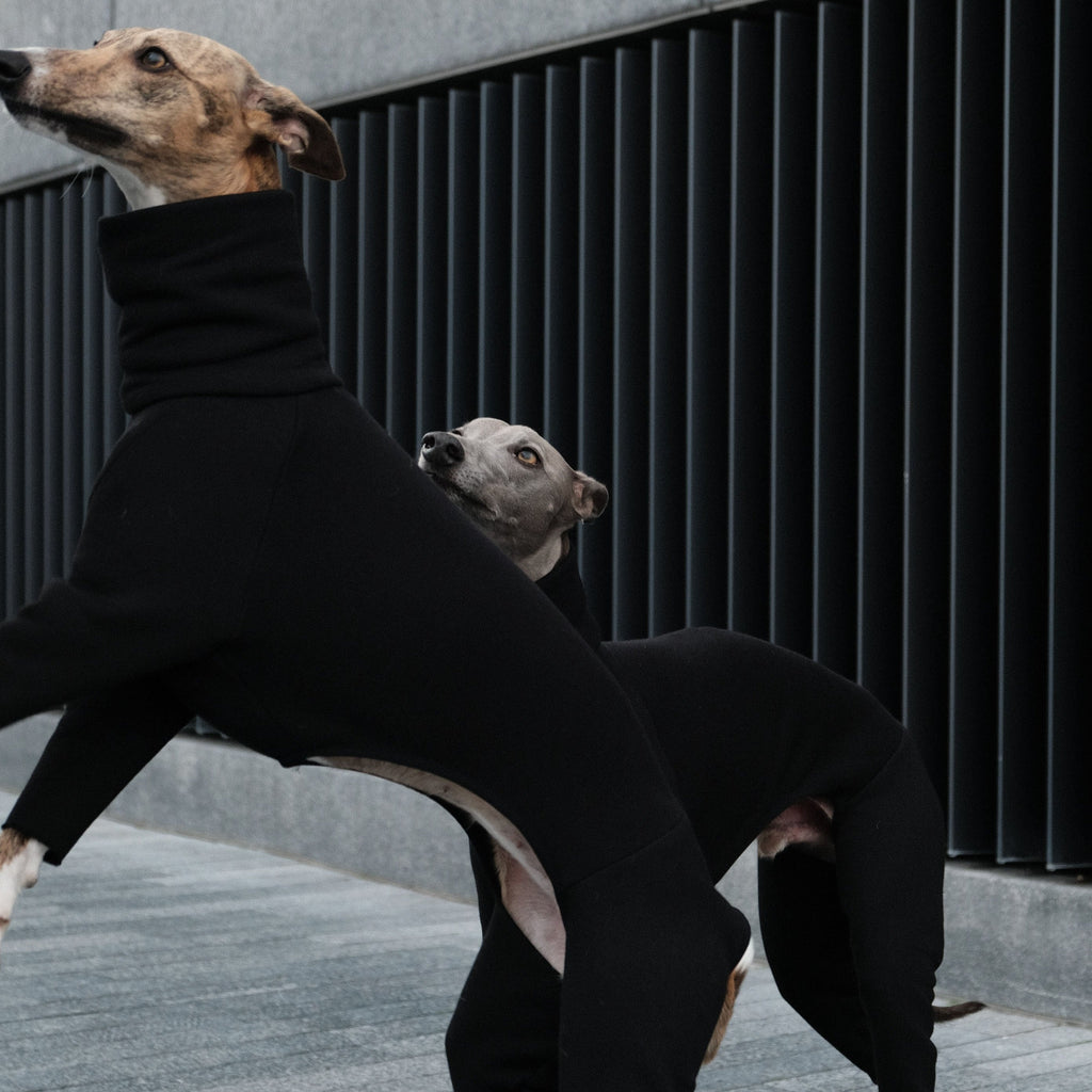 whippet onesie made from cotton