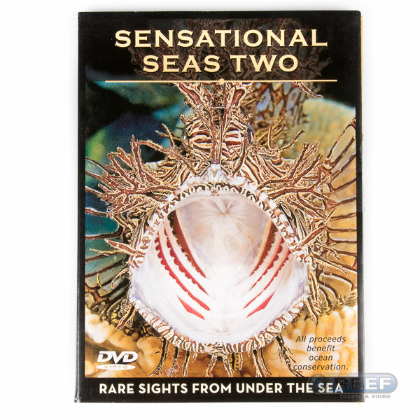 Sensational Sea DVD