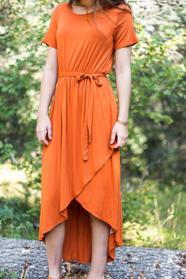 Burnt Orange Dress - Sparrow Noir
