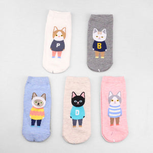 Cats Wearing Sweaters Gift Box