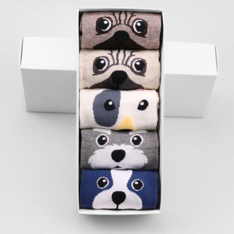 Image of Dog Socks Gift Box