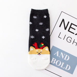 Christmas Dog Socks