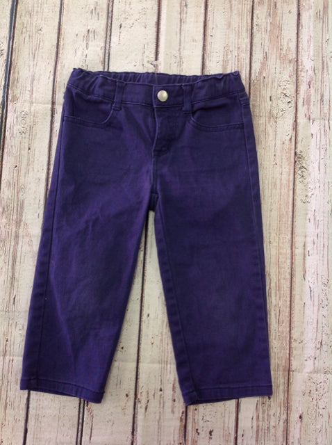 Gymboree Purple Pants