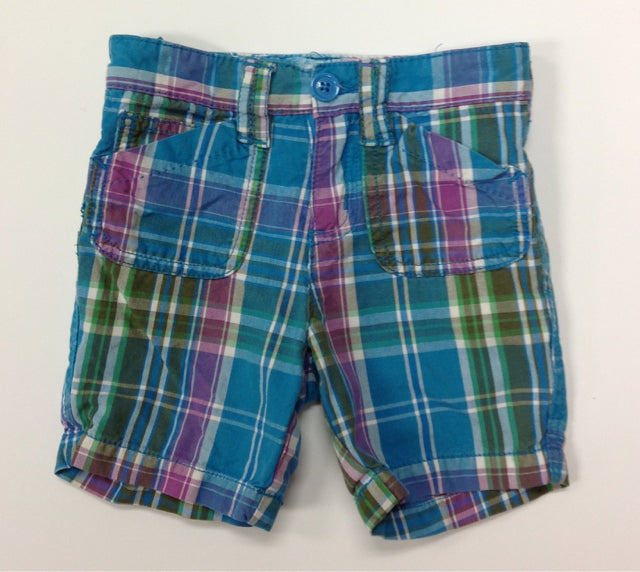 PLACE AQUA & BERRY Shorts