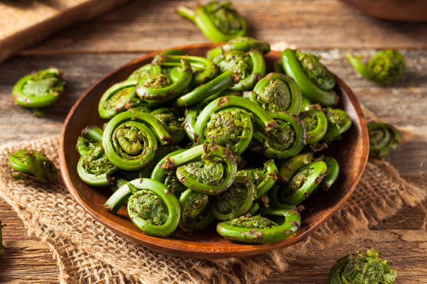 Cooked Fiddleheads in Bowel