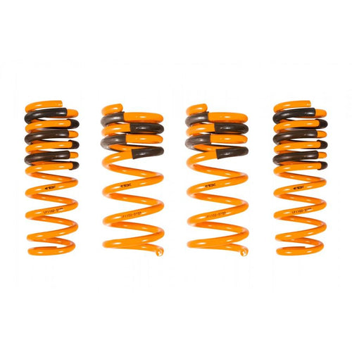 ARK Performance GT-F Lowering Springs - Infiniti G37 Coupe 3.7L Coupe RWD (08-13)