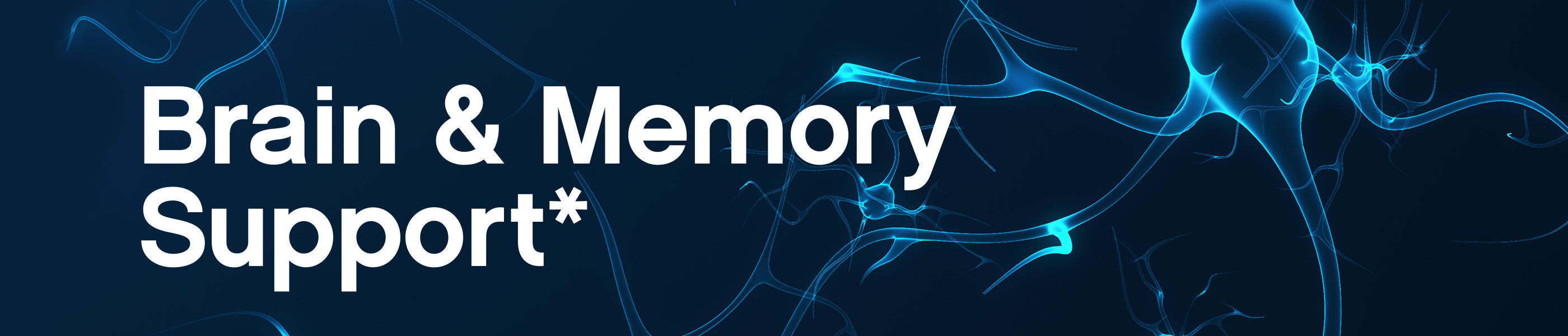 Brain & Memory Support header image