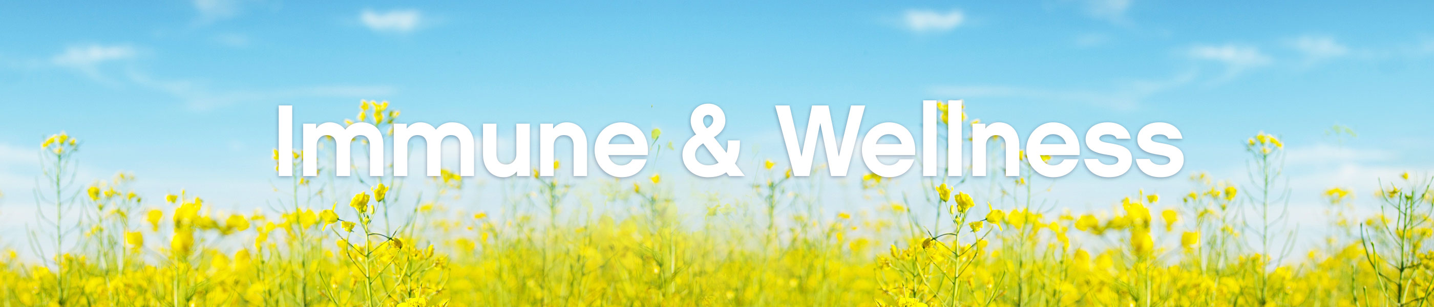 Immune & Wellness header image