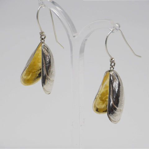 Double mussel shell earrings silver and gold