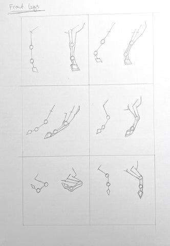 Stick figure pencil drawings of the horse's front legs.