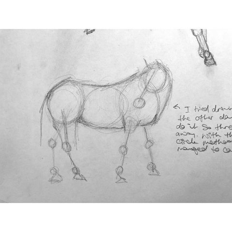 Loose drawing of a horse looking around.