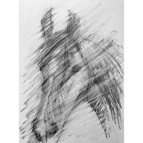 Erasing as part of tonal drawing exercise of a horse's head.