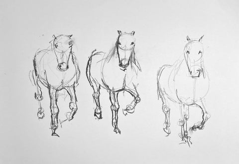 Gestural charcoal drawing of a horse.