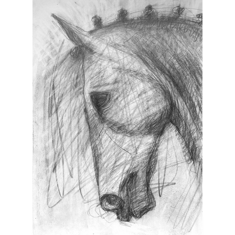 Gestural pencil drawing of a horse head.