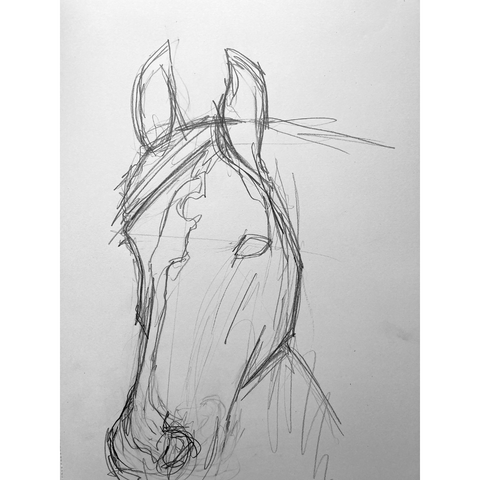 Drawing a horse head with the non-dominant hand
