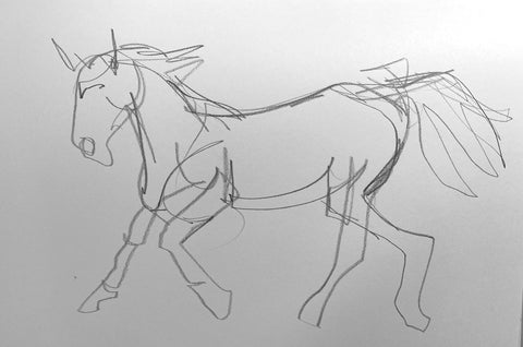 Blind contour drawing of a horse