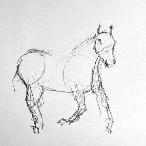 Fast charcoal sketch of a horse.