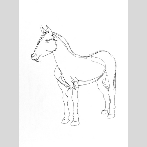 A continuous line drawing in pen of a horse.
