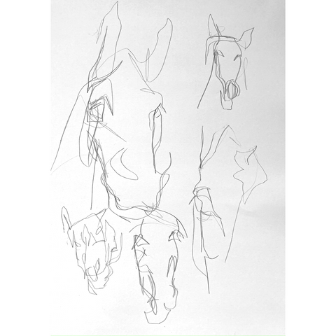 Blind contour drawings of horse's heads.