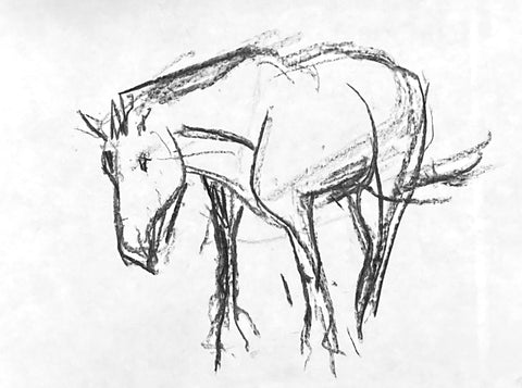 Charcoal drawing of a horse standing.