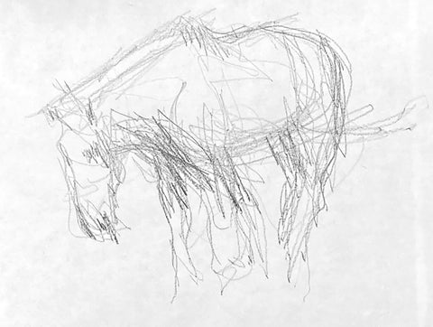 Pure graphite drawing of a horse standing.