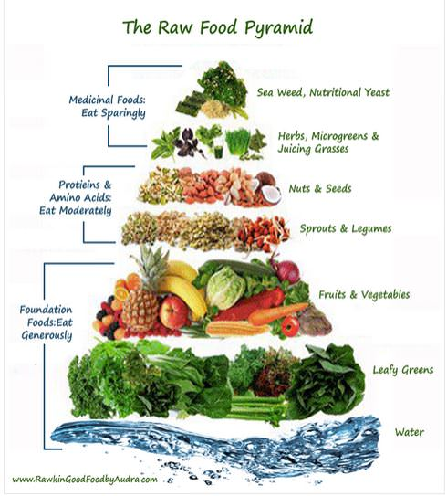 The Health Benefits of a Raw Food Diet