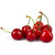 Cocktail Cherries Red with Stem 1x4 L