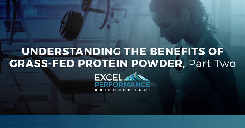 Understanding The Benefits Of Grass-Fed Protein Powder, Part Two