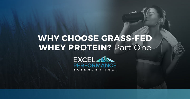 Why Choose Grass Fed Protein
