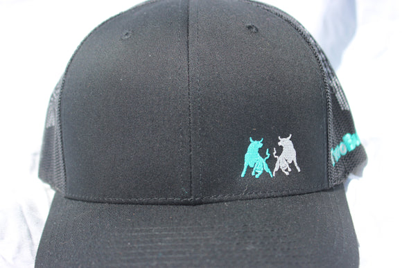 Two Bulls Black and Teal Snapback