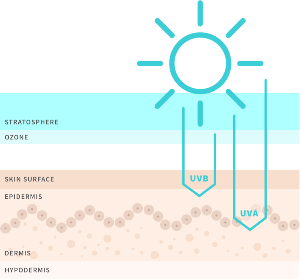 What are UV Rays?