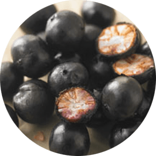Acai Berry Fruit Extract image